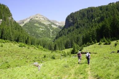 Fagaras traseu Piscul Negru - Lacul Caltun_02