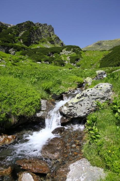 Fagaras traseu Piscul Negru - Lacul Caltun_13