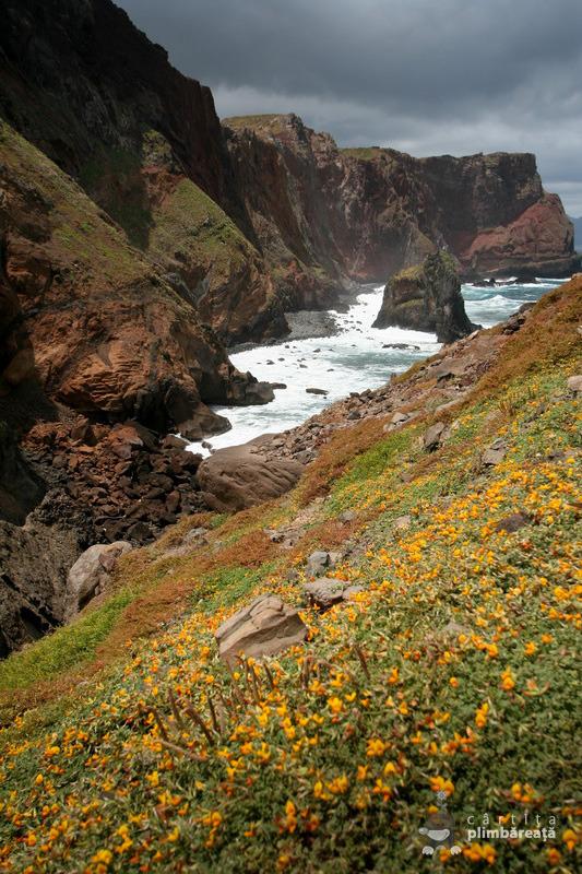 Madeira - Peninsula Sao Laurenco_16