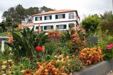 Madeira e cu adevarat insula lorilor