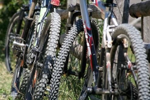 Sat Pestera - Fantana lui Botorog: 7 kilometri de plimbarica usoara si privelisti la greu in Culoarul Rucar-Bran
