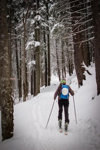 Plimbare pe schiuri Gura Diham Poiana Izvoarelor_02