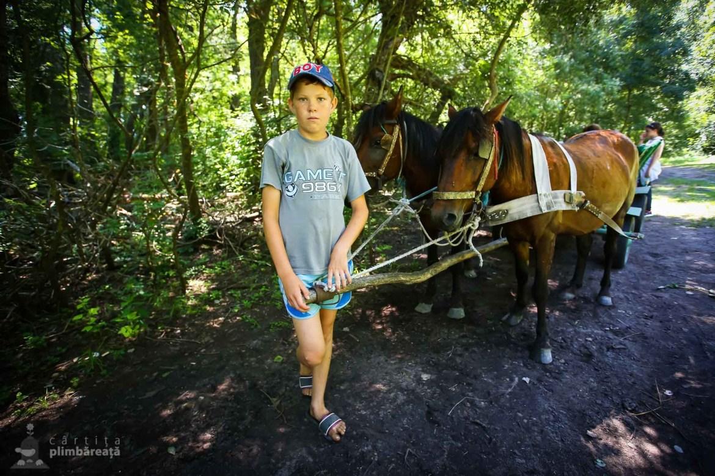 Cozmin, 12 ani, ghidul nostru prin Padurea Letea