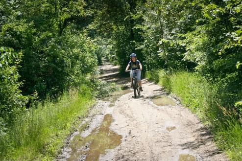 Prin Padurea Pantelimon in drum spre Branesti