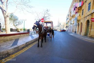 Vacanta City Break Malta_022