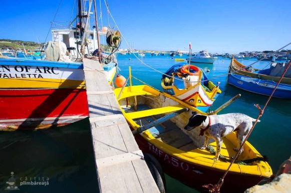 Vacanta City Break Malta_130