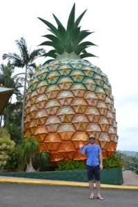 Big_Pineapple