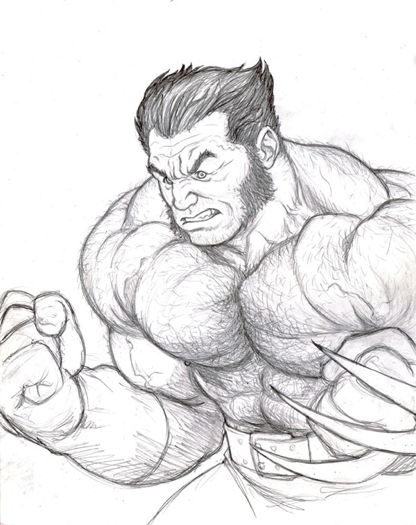 30 Wolverine Cartoon Character Sketches