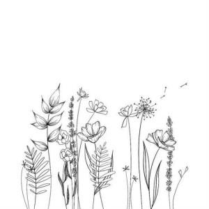 flower easy drawings simple beginners cartoon source district