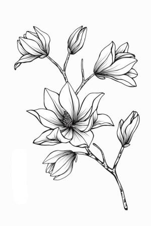 flower drawings easy simple drawing beginners sketches cartoon flowers tekeningen magnolia tattoo bloem district plant cartoondistrict outline floral tatoeage line