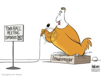 Ann Telnaes Editorial Cartoons Town Hall Comics And Cartoons The Cartoonist Group