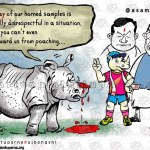 Plight of Rhino