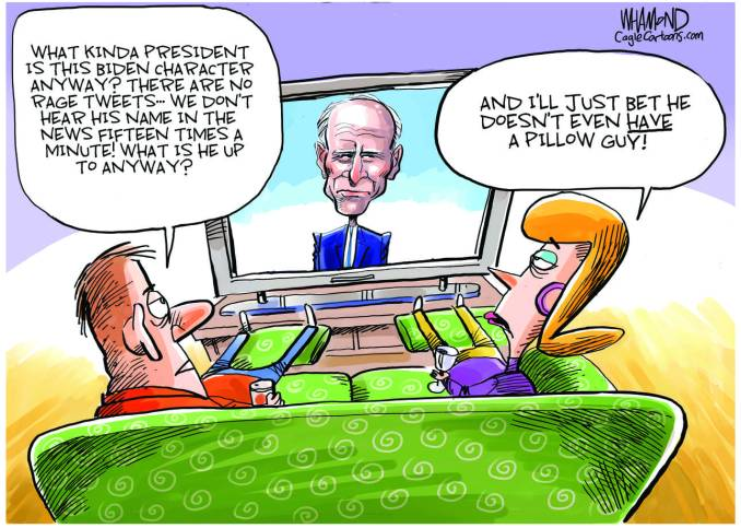 Getting used to the Biden presidency by Dave Whamond, Canada, PoliticalCartoons.com
