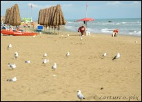2012, Aug. - Silvi Marina beach, Abruzzo