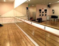 Free Shipping for Ballet Bars, Wall Mounted or Portable ...