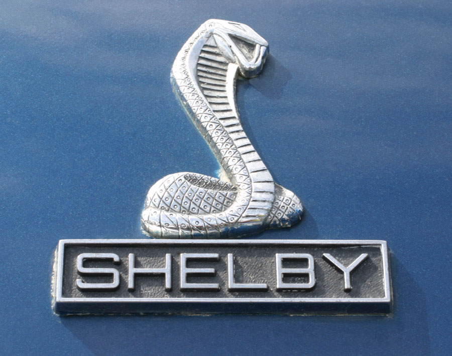Shelby  Cartype