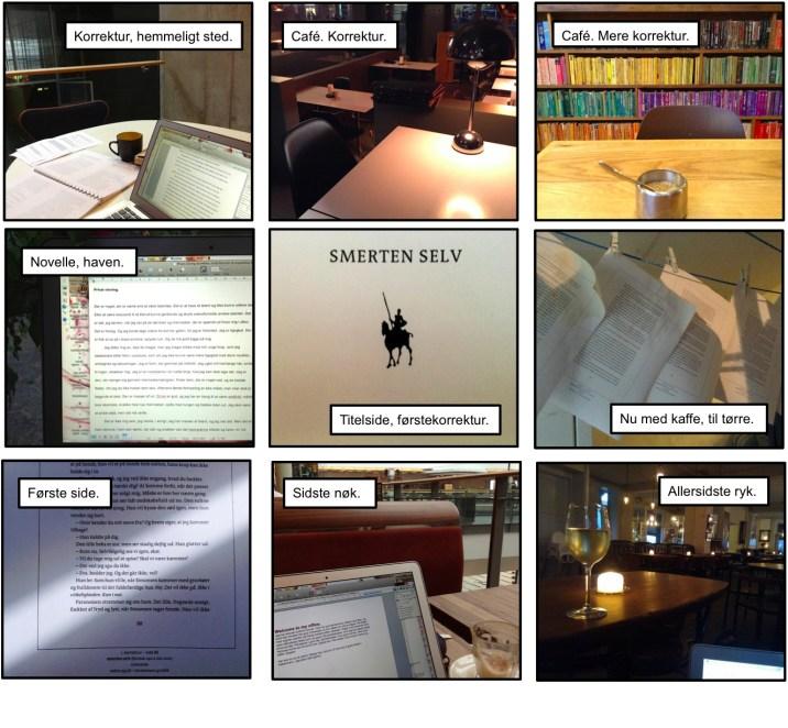 Skrivebordsbilleder2