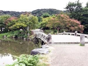 京都の円山公園の池