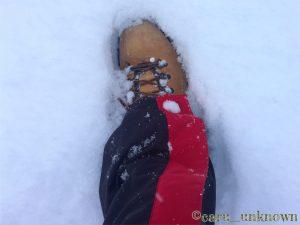 雪の貴船神社に向かう足