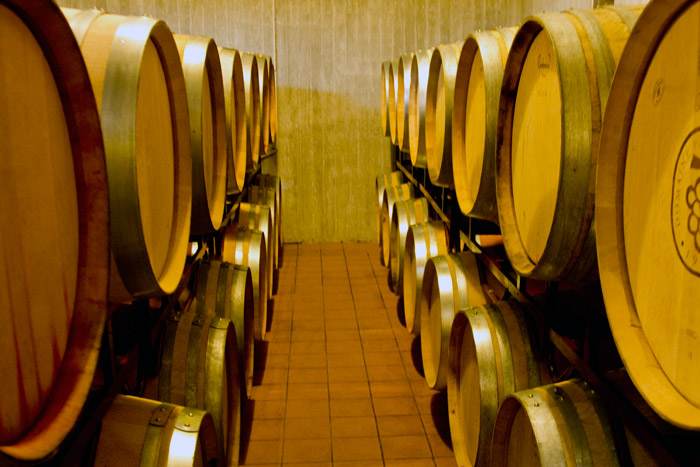 Grape Escape - Greek wine experiences