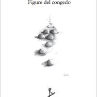 Davide Tartaglia - Figure del congedo