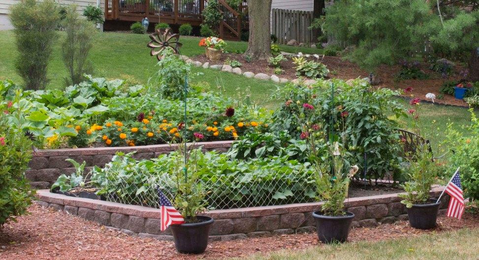 Garden in raised beds