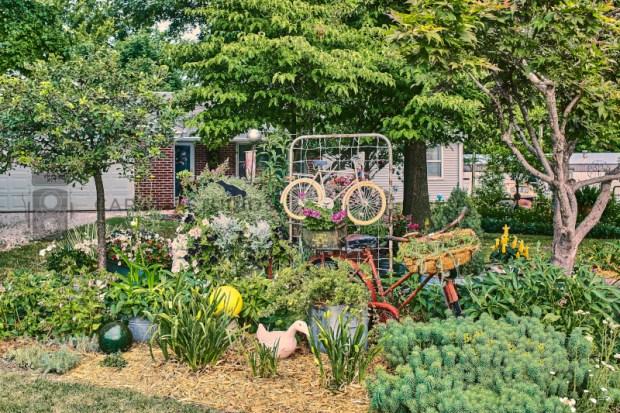 Heman garden front yard