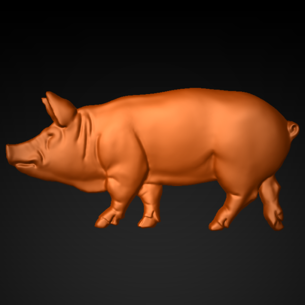 Pig_2x4_2_front
