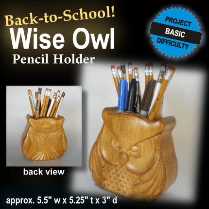 Wise Owl Pencil Holder