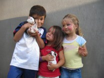The Kids and The Guinea Pigs!