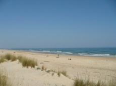praia_dunas