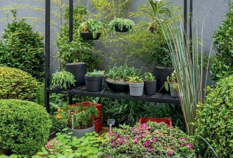 inverno cuidados com plantas jardim renato navarro e1560823349631 Vision Art NEWS