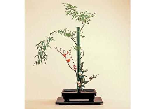 Ikebana com bambu. Galho com pequenas flores vermelhas. Folhas de bambu acima