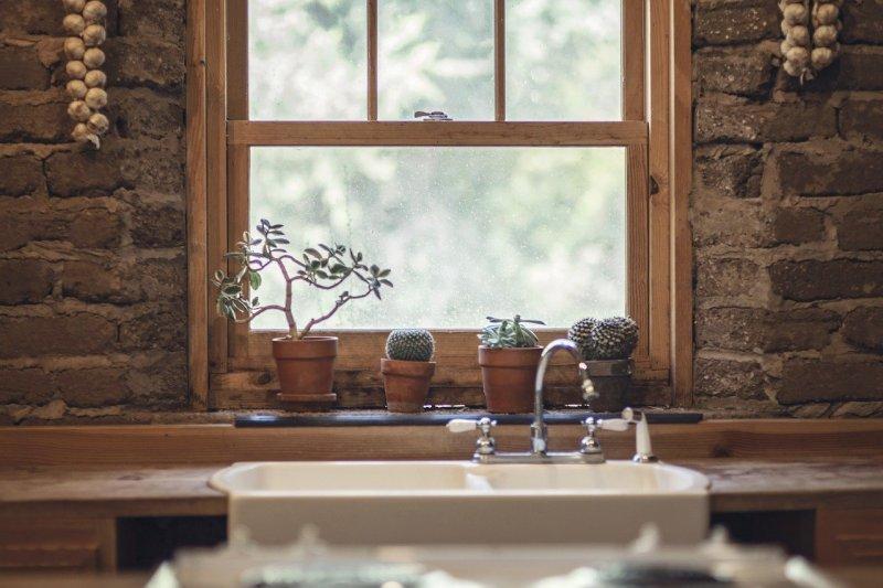 Feng Shui Como incluir plantas na sua casa seguindo a prática 08 Vision Art NEWS