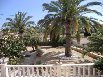Casa-Alicia-tuin-met-palmen