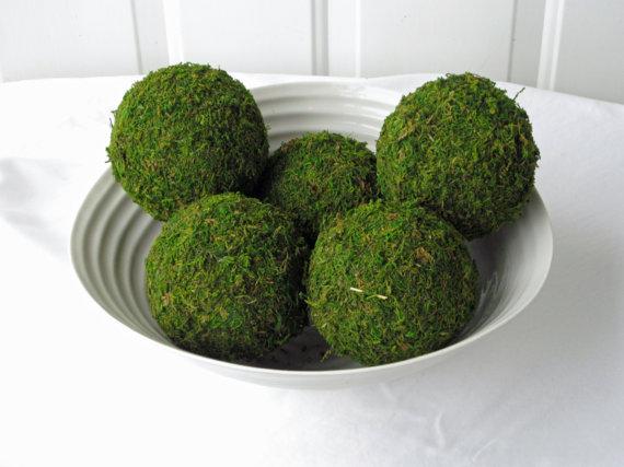 As famosas bolas de musgo estão em alta