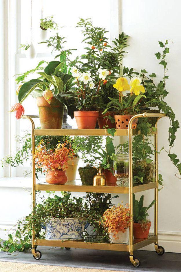 Mais espaço para as suas plantinhas, agora acomodadas em 02 ou 03 andares.