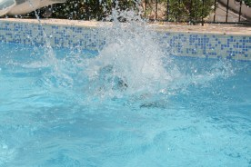 Splash im Pool