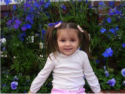 phipps-ella-blue-flowers.jpg