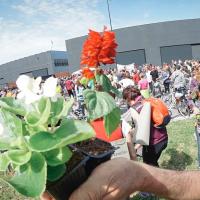500 biciclette e non solo alla MARCIA dei pFIORI | Gallerie fotografiche e video