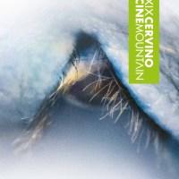 CERVINO CINE MOUNTAIN | Film Zemu in Concorso