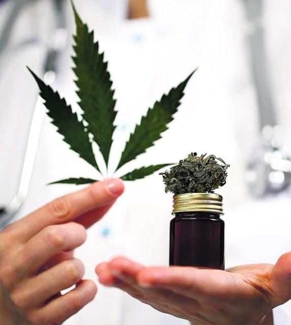 CBD Vida será a primeira com sede no Brasil a comercializar medicamentos à base de canabidiol
