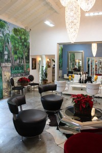 Robert Garcia Salon