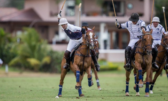Featured Image Upcoming Casa de Campo Polo Summer Season