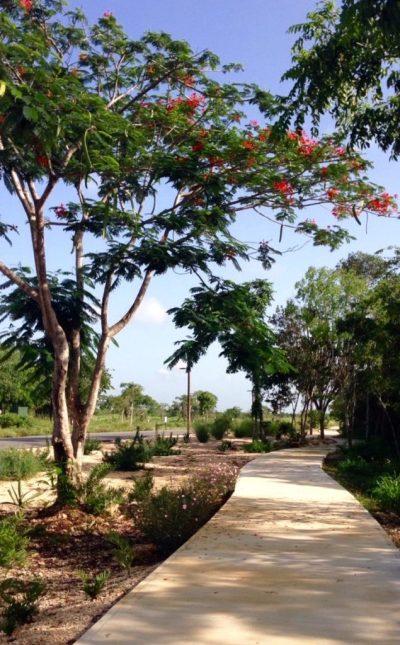 Vista Lagos - Parkland