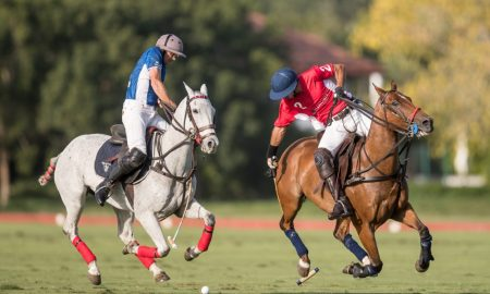 Polo Challenge Silver Cup