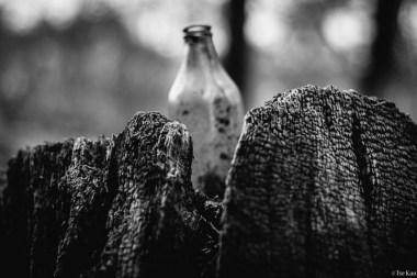 kao-backyard-bottle-7171