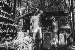 20160624_DTRH_Swamp-9522
