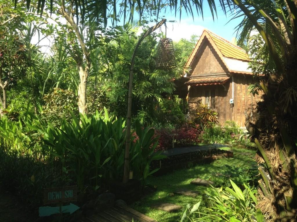 Accomodation Bali