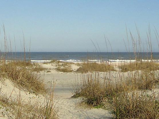 Dunes at St. Augustine Beach